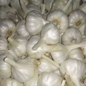 Garlic Nadu 500g NEW