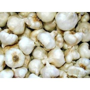 Small Garlic NEW 250g